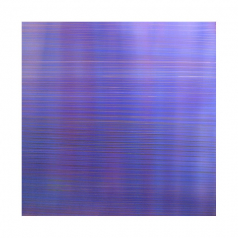 Interference #6  Acrylic on panel  45x45x2  inches  2011