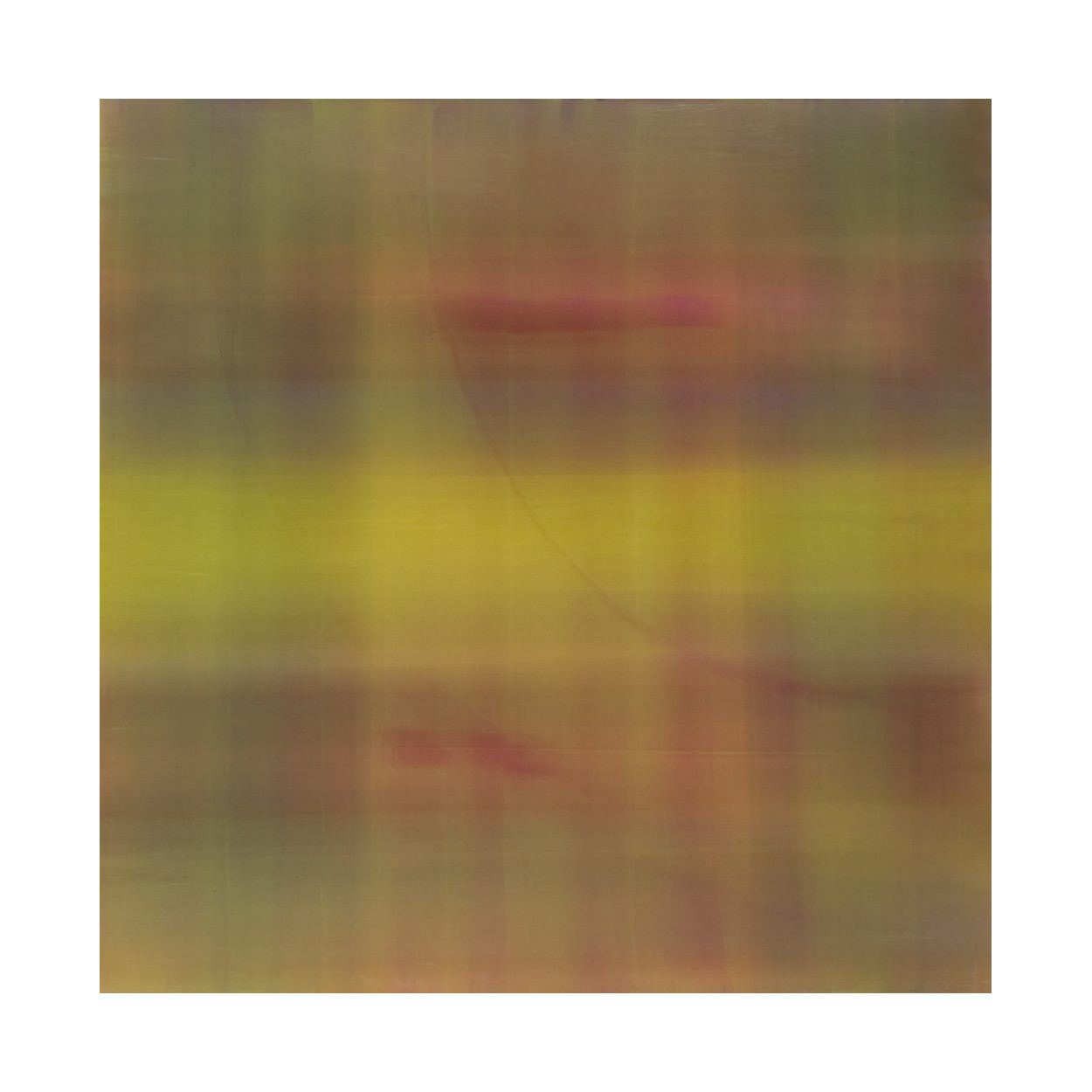 Tetrachromat #5  Acrylic on panel 36x36x2.5 inches  2008